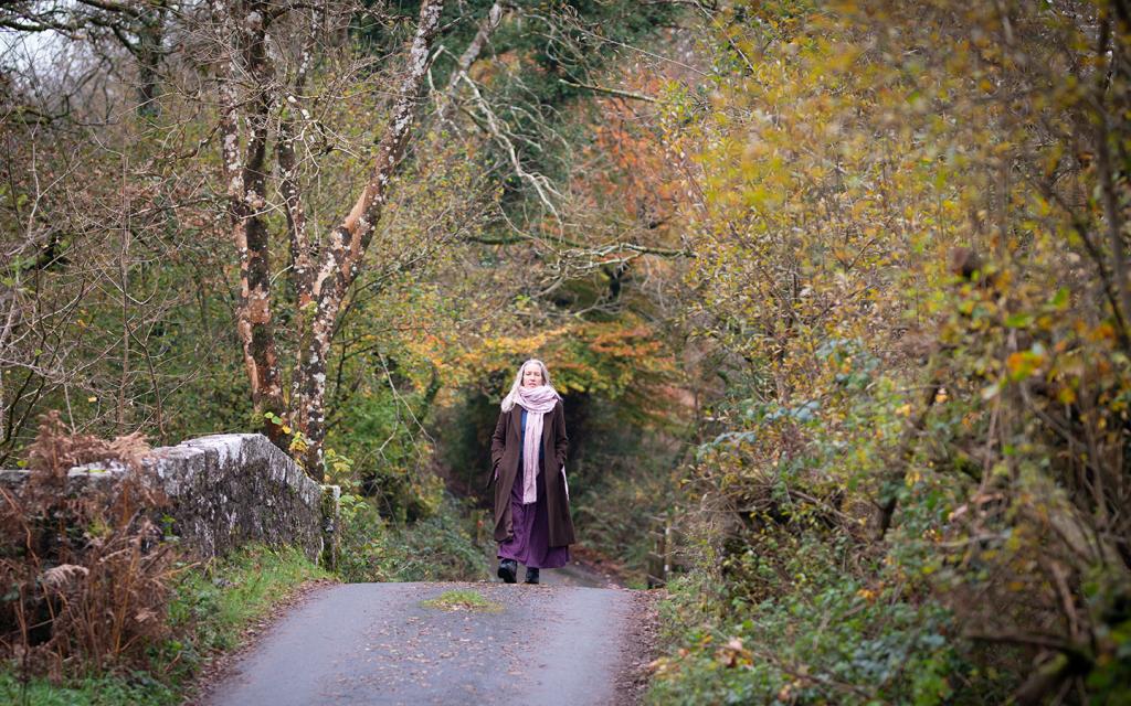 Walking in the Devon Woods