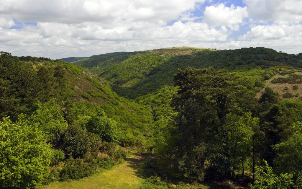 Teign Valley Dartmoor